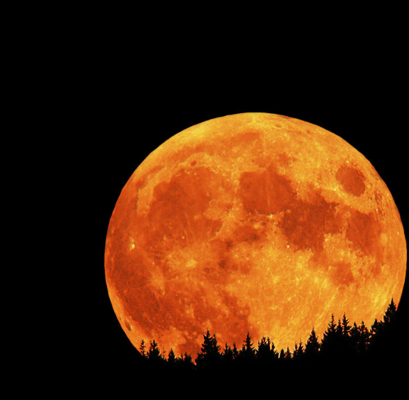 Significance and Effects of Moon in Eight 8th House Vedic Astrology |